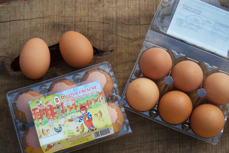 confezione-uova.jpg